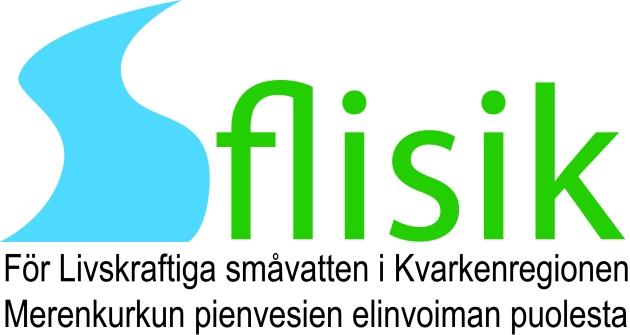 FLISIK