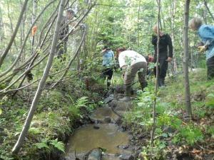 Stensättning av Ängesholmspottens bäck sommaren 2013